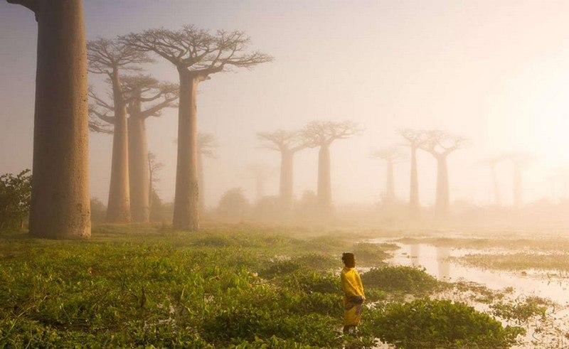 20 самых шедевральных снимков, сделанных для National Geographic - №15