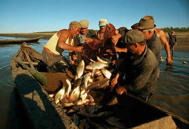 Фотограф National Geographic Дин Конгер - №12