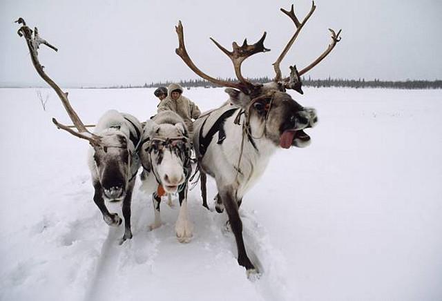 Фотограф National Geographic Дин Конгер - №28