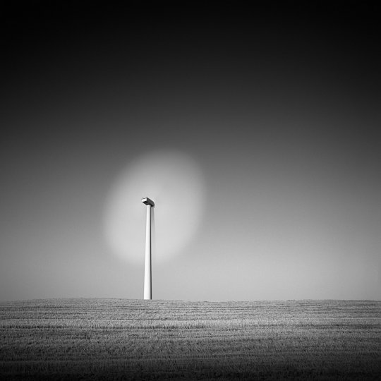 Фотограф Стив Ландерос - №16
