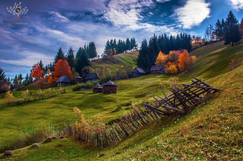 Фотограф АлексРобчук - №16