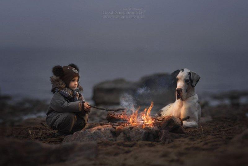 Фотограф Андрей Селиверстов - №16