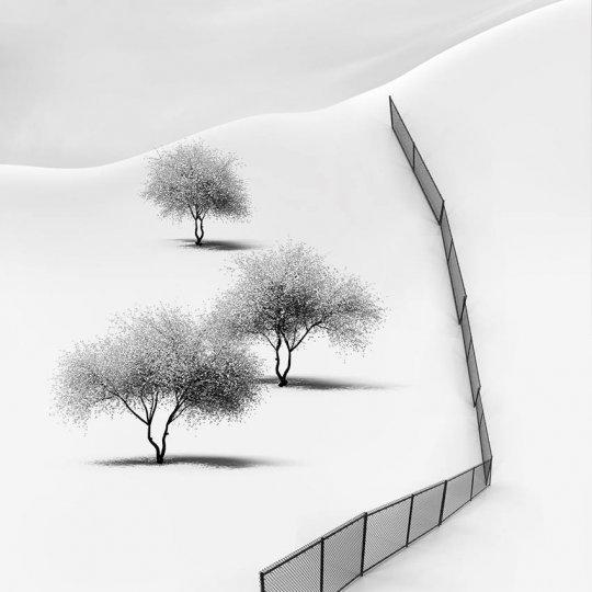 Фотограф Vassilis Tangoulis - №1