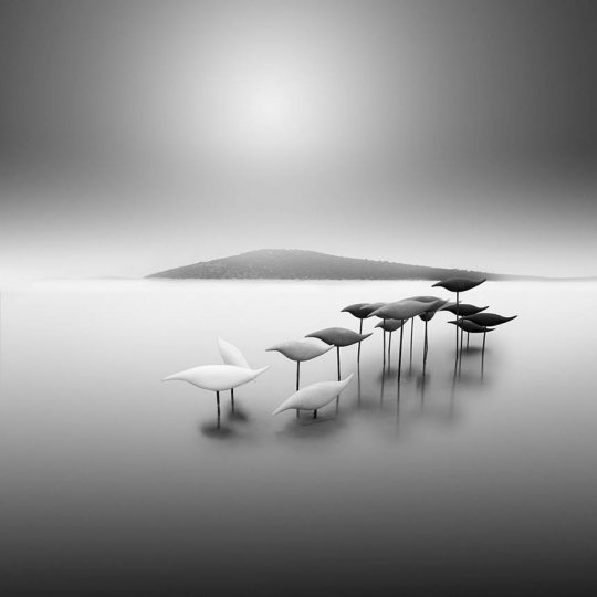Фотограф Vassilis Tangoulis - №13