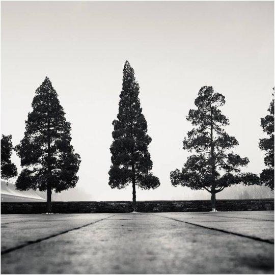 Фотограф Йозеф Хофленер - №11
