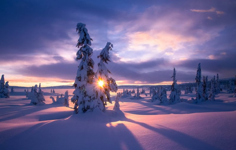 Фотограф Jоrn Allan Pedersen - №13