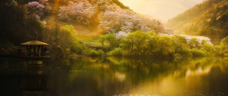 Фотограф Jaewoon U - №6