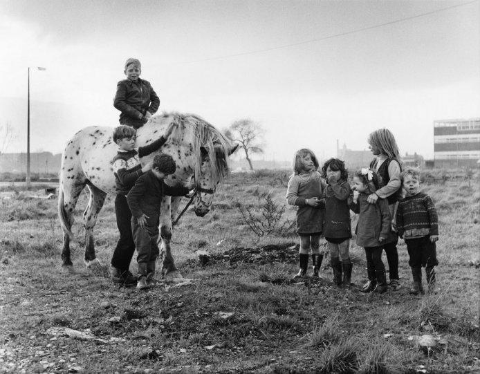 Фотографии Ширли Бейкер 1960-х годов - №3