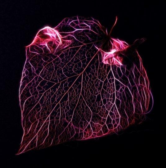 Абстрактное искусство в простых листьях - №16