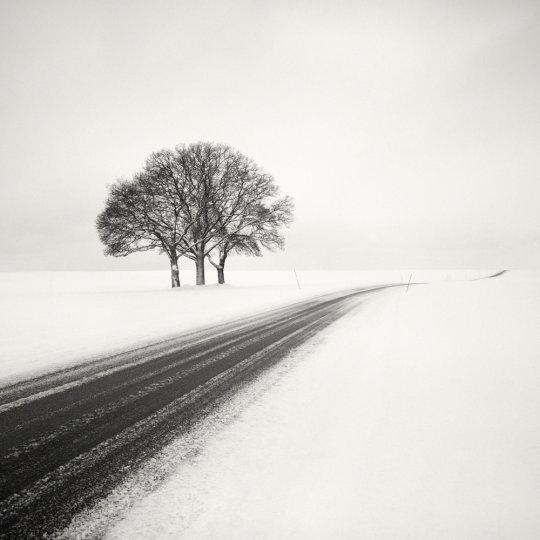 Шведский фотограф Хокан Странд - №10