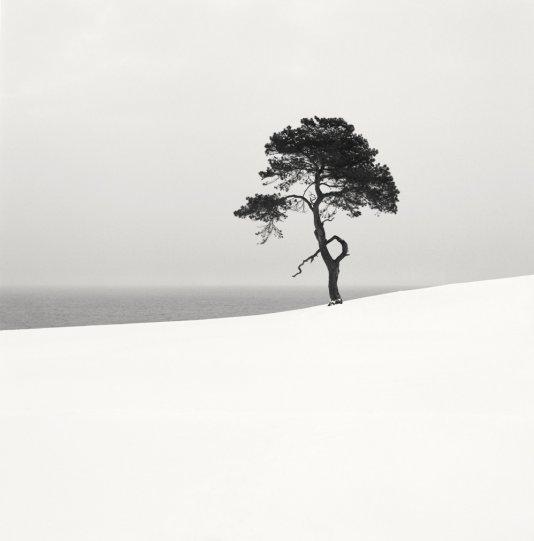 Шведский фотограф Хокан Странд - №13