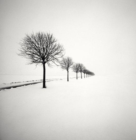 Шведский фотограф Хокан Странд - №19
