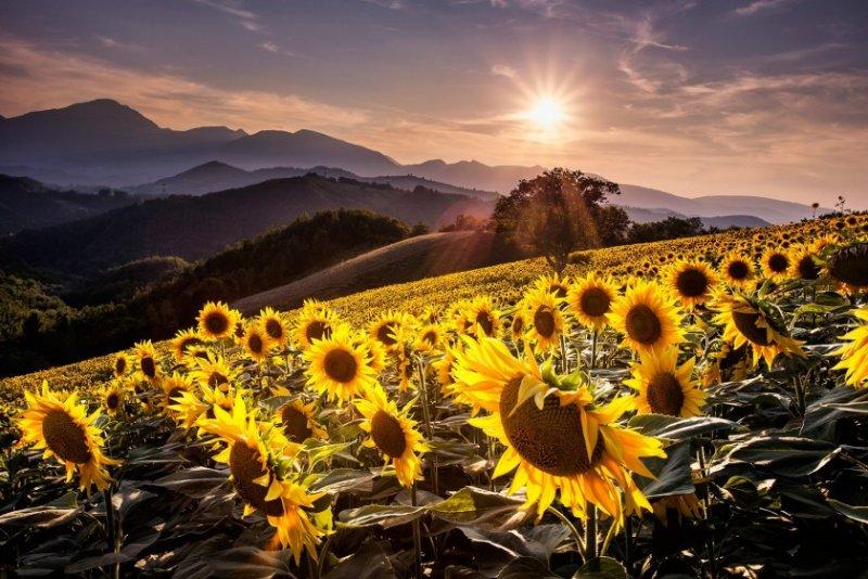 Красивые пейзажные фотографий со всей Земли - №10