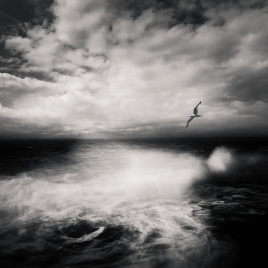 Фотограф Золтан Бекефи - №12