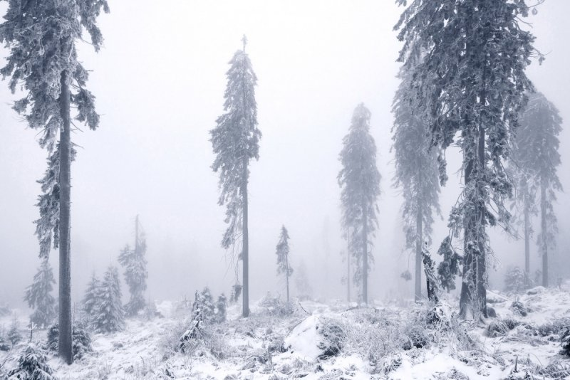 Килиан Шоенбергер «Зимняя сказка» - №17
