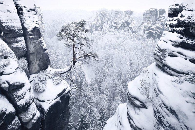 Килиан Шоенбергер «Зимняя сказка» - №21