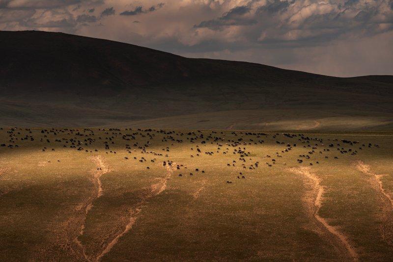 Потрясающие пейзажи Киргизии - №9
