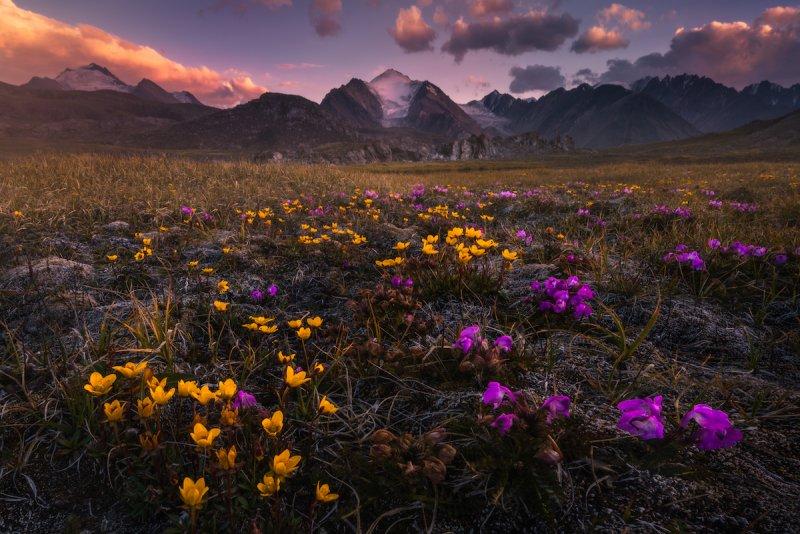 Потрясающие пейзажи Киргизии - №12