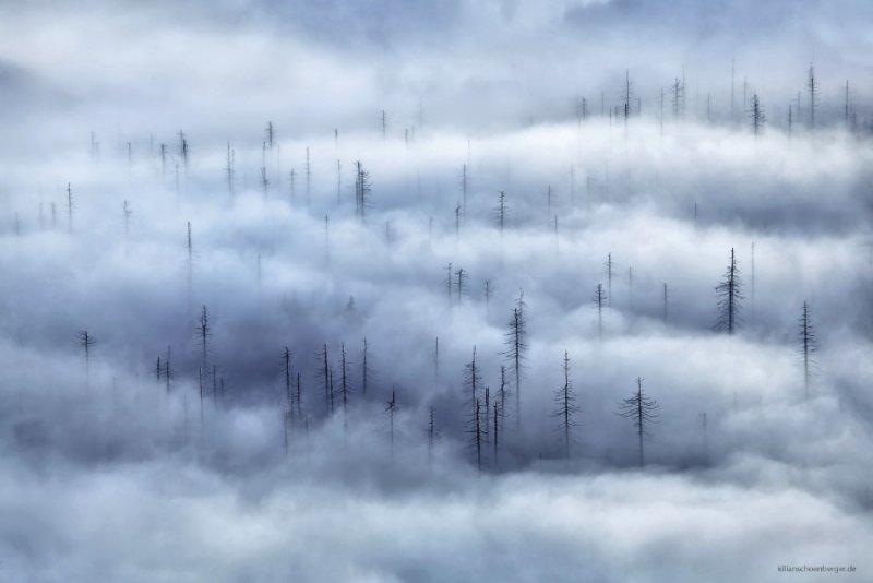 Уникальное фотографическое видение Килиана Шоенбергера - №6