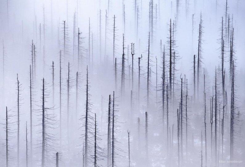 Уникальное фотографическое видение Килиана Шоенбергера - №14
