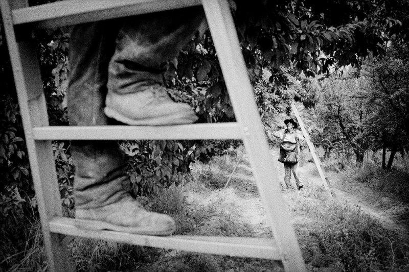 Америка в фотографиях Мэтта Блэка - №8