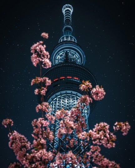 Токийский фотограф RK - №12