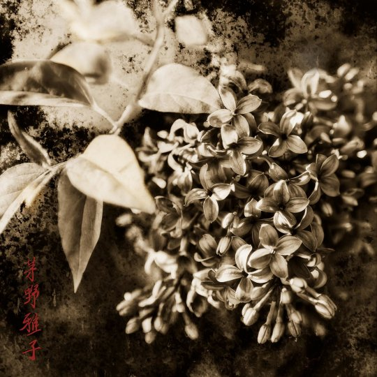 Фотосерия «Плавучий мир» - №6