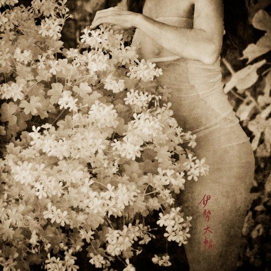 Фотосерия «Плавучий мир» - №8