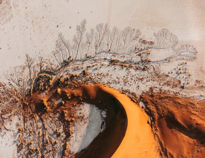 "Том Хеген ""Пустыни Намибии"" - №1"