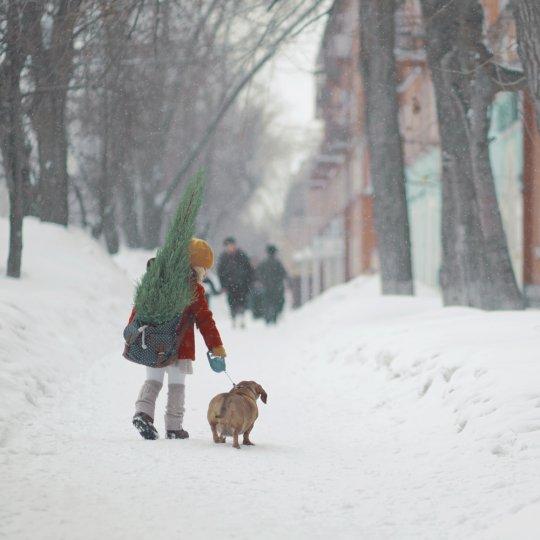 Фотограф Анна Гражданкина - №2