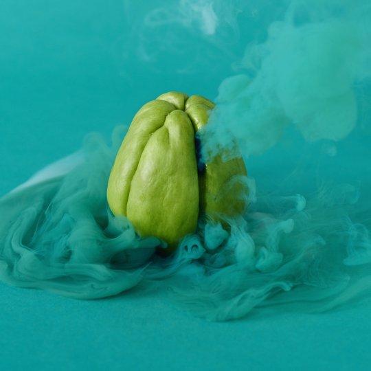 «Тайная жизнь фруктов и овощей» - №20