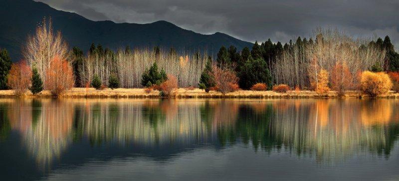 Автор: Jiongxin Peng. Новая Зеландия