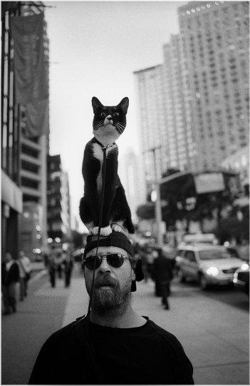 Фотограф Мэтт Вебер - №42