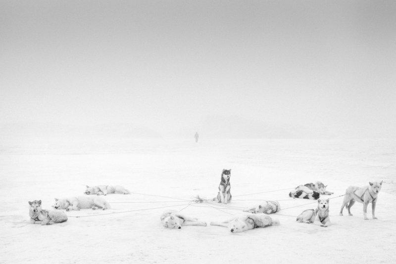 Фотограф Рагнар Аксельссон - №5