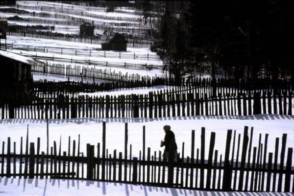 Профессиональный фотограф, гений случайных моментов - Берт Глинн - №1