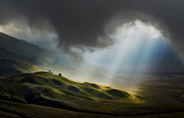 Новости в фотографиях - National Geographic Photo Contest 2013 (Часть 2) - №21