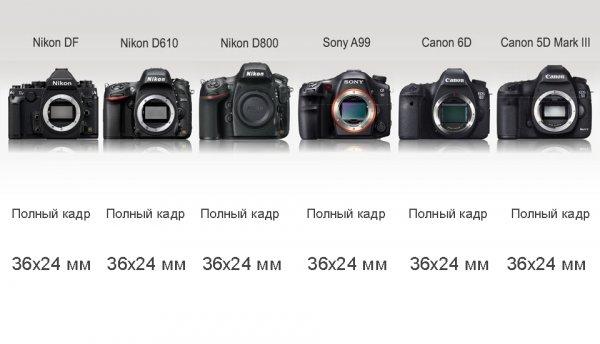 Сравнение новинок профессиональных зеркальных фото камер - №4