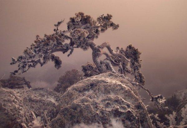 Зимние фото пейзажи из Крыма - №10