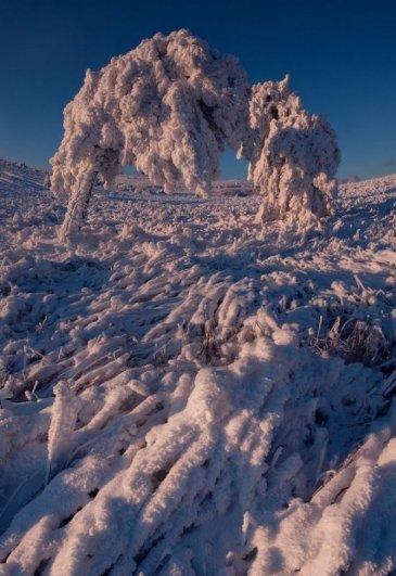 Зимние фото пейзажи из Крыма - №26