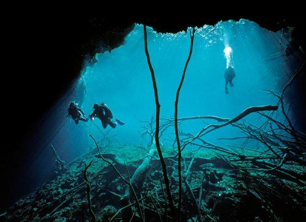 Дайвинг в подводных пещерах - красивые фото природы - №1