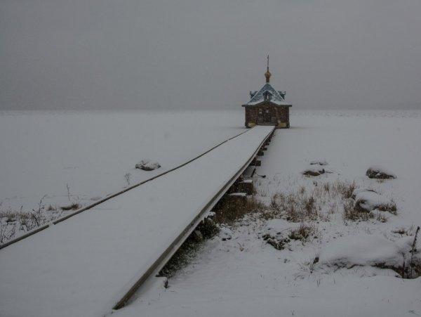 Загонов Кирилл Станиславович