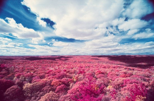 Шон Линч. Инфракрасные фото пейзажи Непала и другие работы  - №7