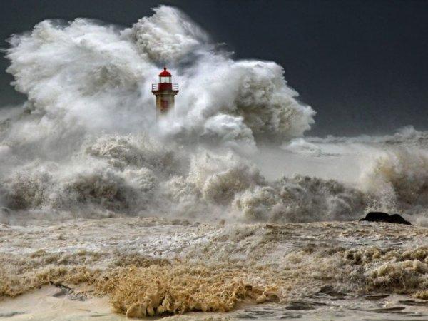 Удивительные и красивые фото кадры природы - №1