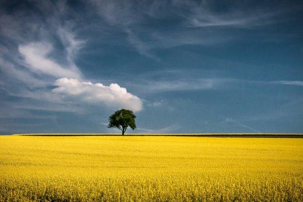 Восхитительные фото пейзажи из Германии. Andreas Wonisch - №4