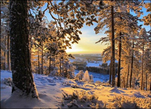 Урок фотографии. Поиск сюжетов для съемки зимой - №8
