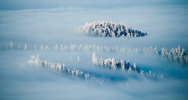 Урок фотографии. Поиск сюжетов для съемки зимой - №12