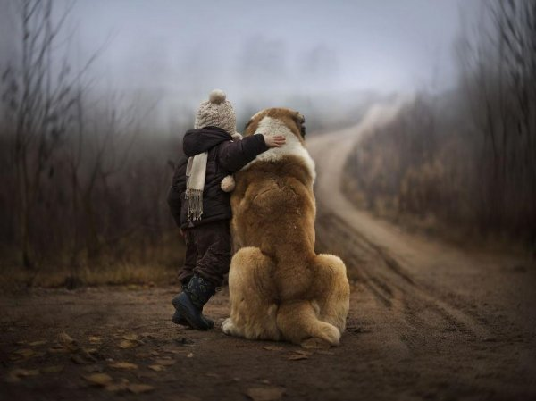 Очаровательные фото кадры - дети и животные - №5