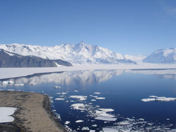 Мир Антарктиды