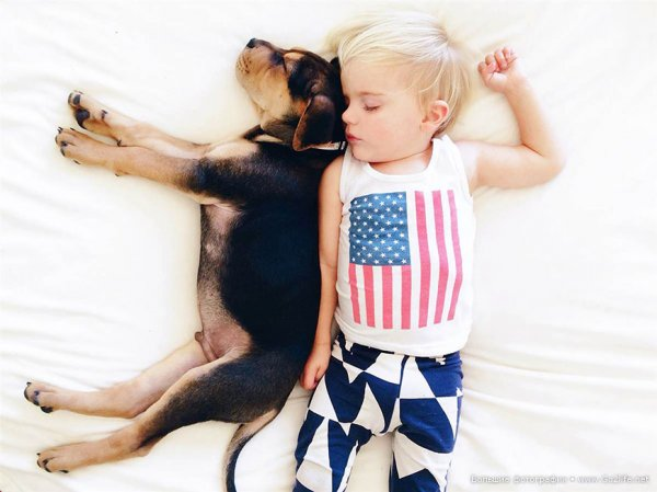 Милые дети и собачки - новый тренд Instagram - №9