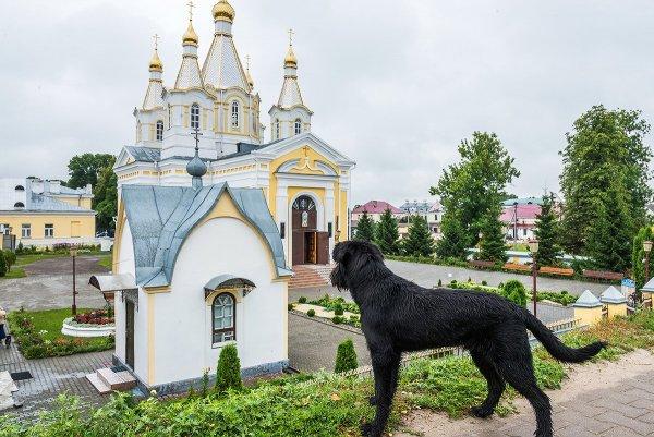 Игорь Сидорук